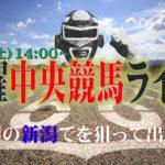 土曜【中央競馬ライブ】開幕週の新潟でこその裏情報発動!