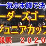 ブリーダーズゴールドジュニアカップ【門別競馬2020予想】大外一気の末脚で決める!