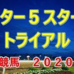アフター5スター賞トライアル【大井競馬2020予想】