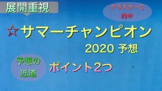 【競馬予想】 地方交流重賞 サマーチャンピオン 2020 予想