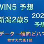 【競馬予想】 新潟2歳ステークス 2020 予想 WIN5 予想 苫小牧特別 朱鷺ステークス 小倉日経オープン