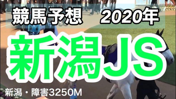 【競馬予想】新潟ジャンプS 2020年