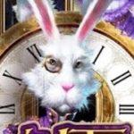【オンラインカジノ】white rabbit ホワイトラビット4リール開放 1912倍