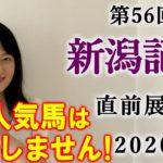 【競馬】新潟記念 直前展望 2020(全頭分析はブログで!) ヨーコヨソー