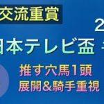 【競馬予想】 地方交流重賞 日本テレビ盃 2020 予想