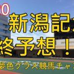 【最終予想】2020新潟記念!夏競馬の最後に難解なハンデ重賞!鍵は馬場?