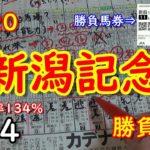 【新潟記念2020】 勝負馬券#14  渾身の予想!!!【競馬予想】