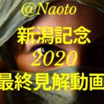 【新潟記念2020】予想実況【Mの法則による競馬予想】