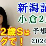 【競馬】新潟記念 小倉2歳S 予想 2020(札幌2歳Sは◎☆○で馬連23.6倍的中!) ヨーコヨソー