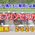園田プリンセスカップ【園田競馬2020予想】門別から人馬ともに帯同し必勝態勢!