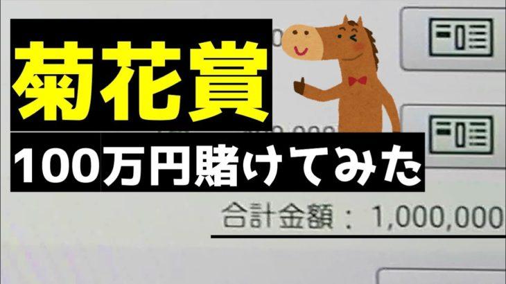 競馬バカが菊花賞に100万円賭けたらやばい結果に…!【菊花賞2020】