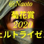 【菊花賞2020予想】ヴェルトライゼンデ【Mの法則による競馬予想】