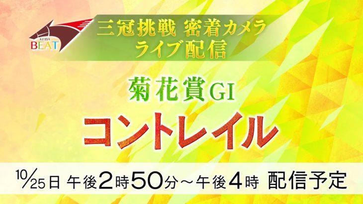 【菊花賞LIVE配信】三冠挑戦コントレイル密着カメラ《CONTRAIL》