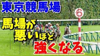 【競馬検証】馬場が悪いほど強くなる枠が判明!【東京競馬場】
