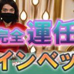ジョイカジノ-ライブバカラ 完全運任せのコインベット!!
