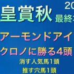 【競馬予想】 天皇賞 秋 2020 本予想