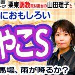 【競馬ブック】みやこS 2020 予想【TMトーク】(栗東)