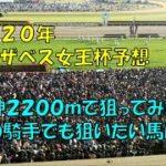 2020年 エリザベス女王杯予想【ぜんこうの競馬予想 京都2200mと阪神2200mの違いで狙いたい穴馬は】