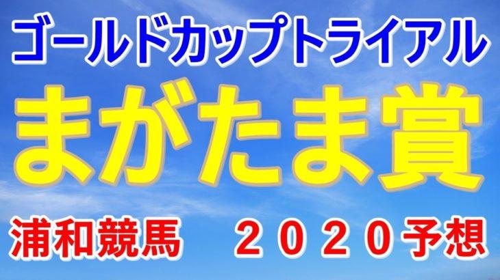 まがたま賞【浦和競馬2020予想】ゴールドカップトライアル