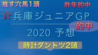 【競馬予想】 地方交流重賞 兵庫ジュニアグランプリ 2020 予想