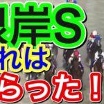 【競馬予想】根岸ステークス2021