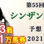 【競馬】シンザン記念 2021 予想 (ポルックスSの予想はブログで!) ヨーコヨソー