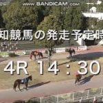 新年一発目の高知競馬で放送事故(2021/01/01)