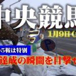 【TEKKEN2021オリジン】1月9日(土)中央競馬極秘情報