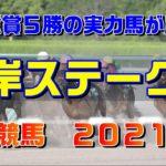 根岸ステークス【東京競馬2021予想】交流重賞5勝の実力馬が勝つ!
