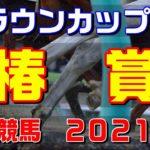 椿賞【川崎競馬2021予想】クラウンカップTR