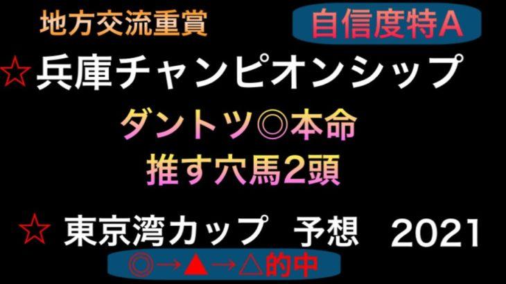 【競馬予想】 地方交流重賞 兵庫チャンピオンシップ 東京湾カップ 2021 予想