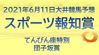 【大井競馬予想】スポーツ報知賞他10R・12R【2021年6月11日】