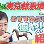 【あきらの府中探訪記】東京競馬場のおすすめスポット&グルメを紹介!【節約大全】Vol.442