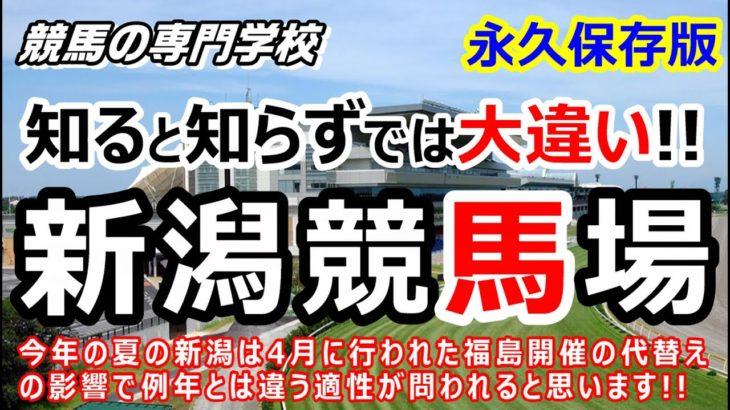 【競馬】新潟競馬場 攻略ポイント 初心者にも分かり易く徹底解説【競馬の専門学校】