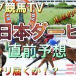 【西日本ダービー 2021】直前予想〜三頭勝負〜パンダ競馬TV