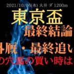 【最終追い切り・外厩】東京盃 2021 今回買い時!逆転候補のあの穴馬を推奨!【中央競馬重賞予想】