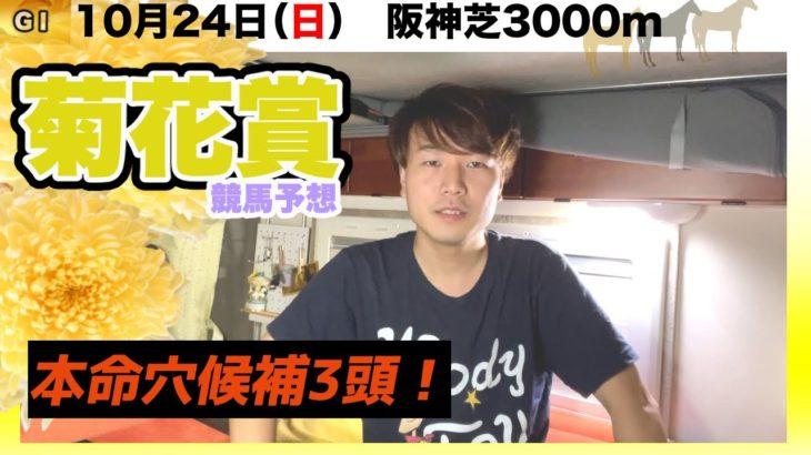 【2021菊花賞】新格言⁉︎菊花賞とオークスはゴールドシップ産駒買っておけ!