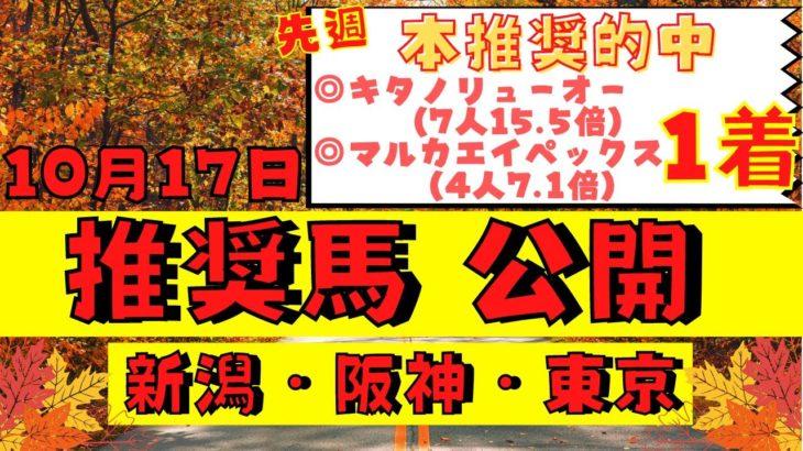 【週間競馬予想TV】2021年10月17日(日) 中央競馬全レースの中から推奨馬を紹介。新潟・阪神・東京の平場、特別戦、重賞レース。今週デビューの注目新馬も紹介!注目馬を考察。【全レース】