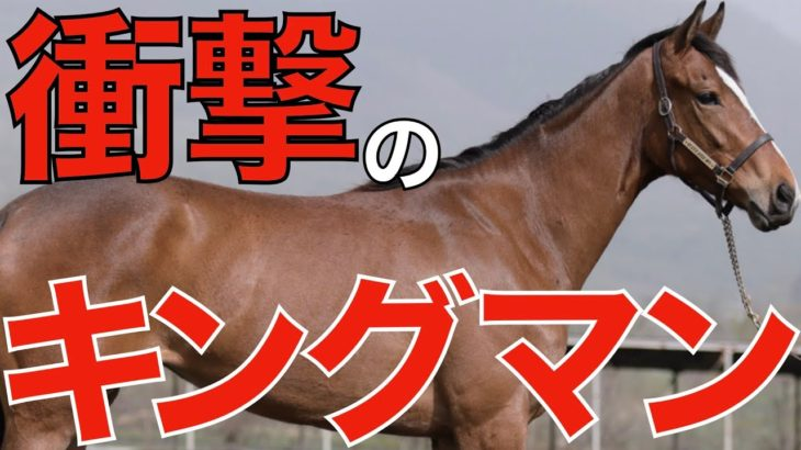 【圧巻】シュネルマイスターが衝撃の末脚で毎日王冠を勝利!父キングマンはフランケルに匹敵する種牡馬かも。【競馬】